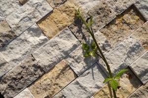 Travertino-chiaro-scuro-mosaico-spacco-rettangolare-rustico-600x397